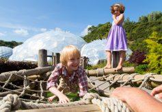 children-climbing-on-the-nest