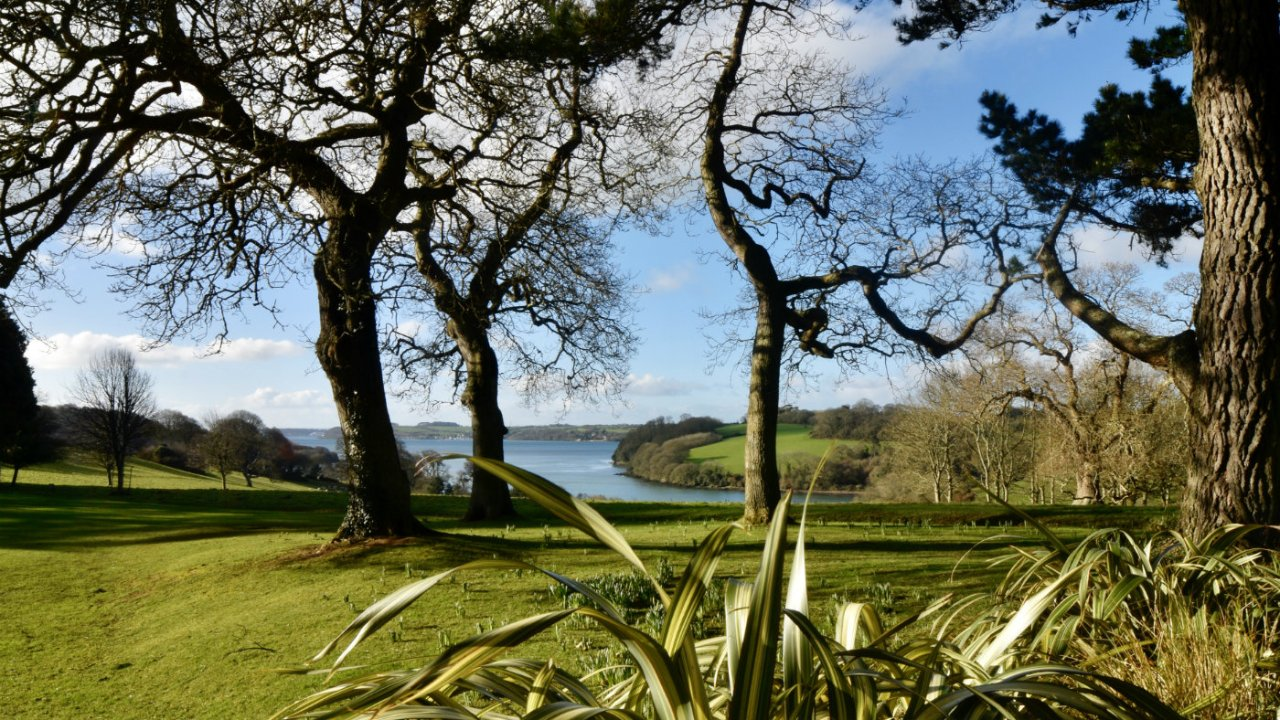 National Trust Trelissick