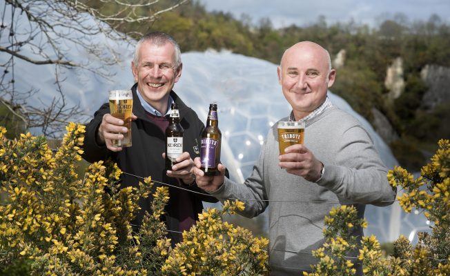 Eden Project St Austell Brewery New Gorse Beer